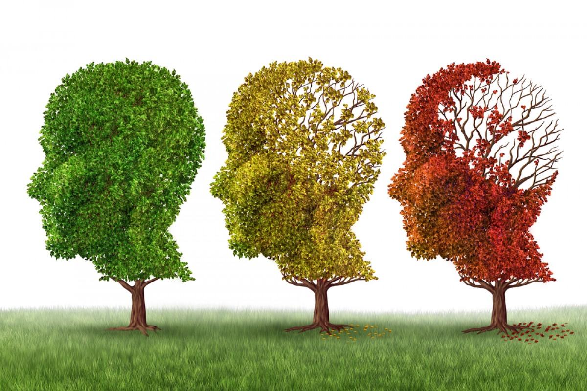 Alzheimer & Άνοια: Διατροφή και Συμπληρώματα Διατροφής